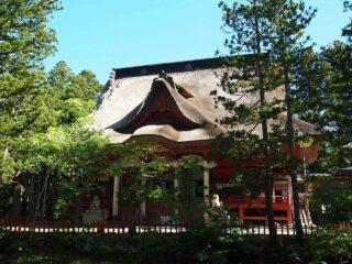 出羽神社・三神合祭殿 会場写真 - 1